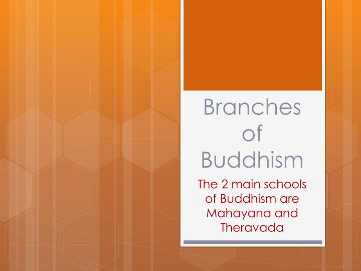 branches of buddhism n.
