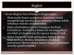 bughot4