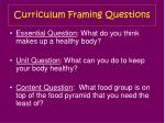 curriculum framing questions