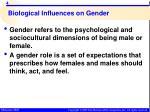 biological influences on gender