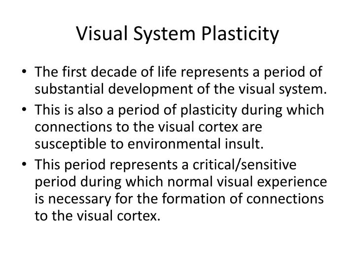Visual System Plasticity