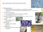 klassieke biotechnologie