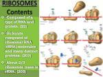 ribosomes contents