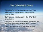 the opendap client