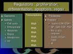 regulators proliferation differentiation apoptosis repair