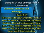 examples of true courage from a child of god4