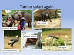 taman safari again