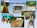 taman safari again1