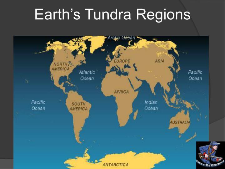 Earth's Tundra Regions