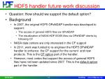 hdf5 handler future work discussion1