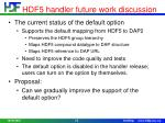hdf5 handler future work discussion2