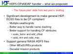 hdf5 opendap handler what we proposed