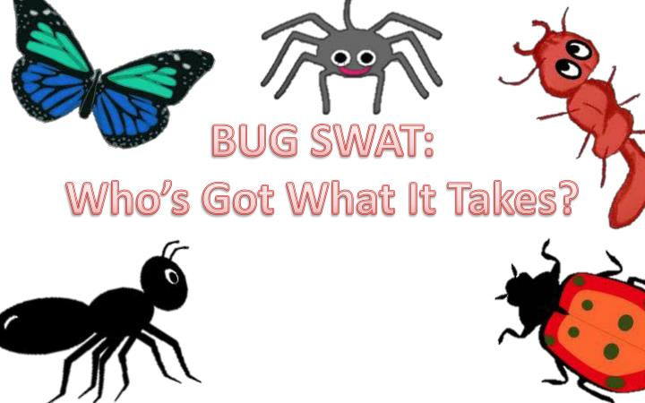 bug swat who s got what it takes n.