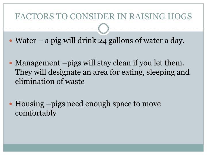 FACTORS TO CONSIDER IN RAISING HOGS