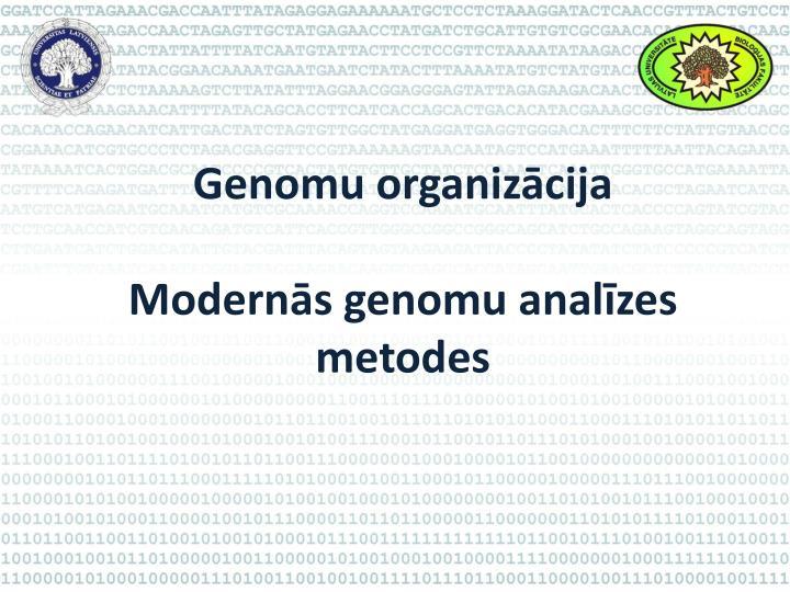 Genomu organizācija
