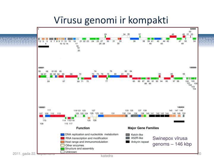 Vīrusu genomi ir kompakti