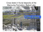 cross beds in fluvial deposits of the manzurka formation baikal lake