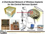 a distributed network of wireless implants for the central nervous system