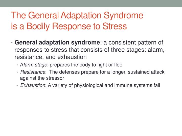 what are the three stages of general adaptation syndrome