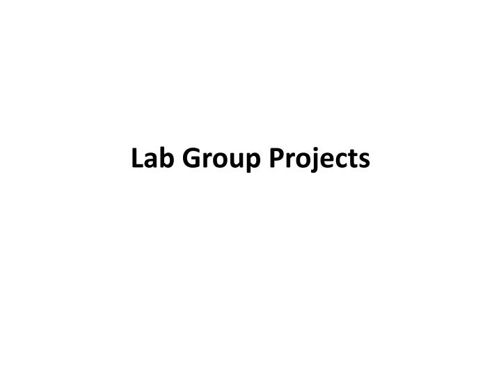 lab group projects n.