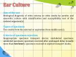 ear culture1