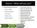 datura what will you see
