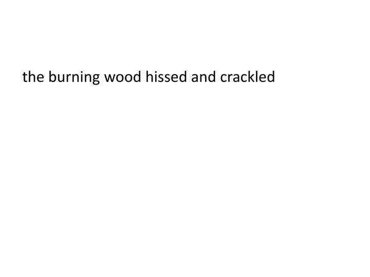 the burning wood hissed and crackled