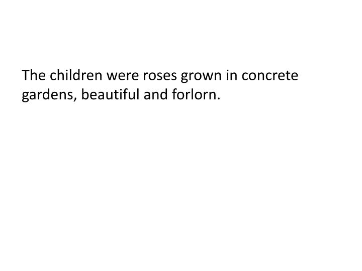 The children were roses grown in concrete gardens, beautiful and forlorn.