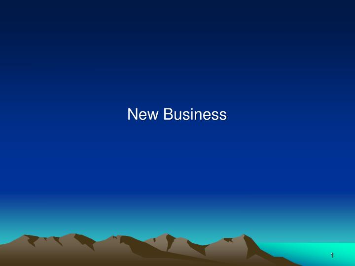 new business n.