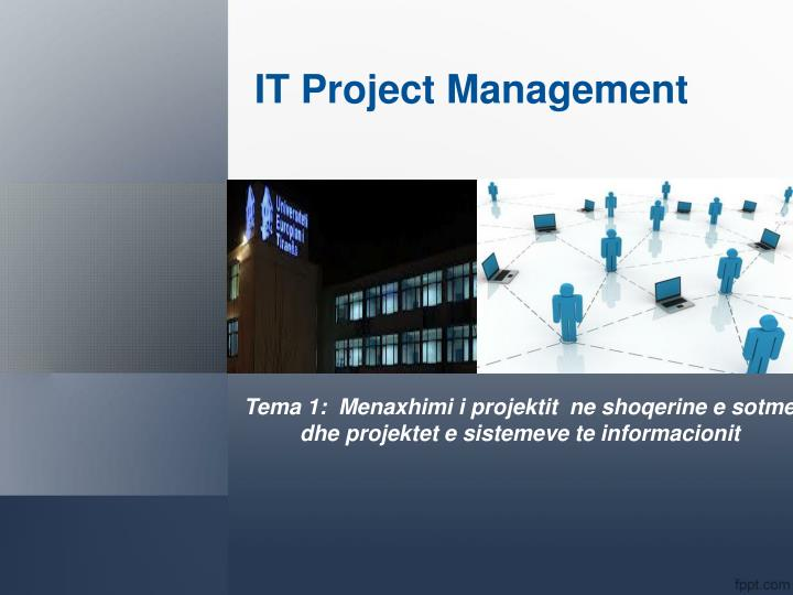 it project management n.