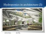 hydroponics in architecture 3