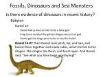 fossils dinosaurs and sea monsters19