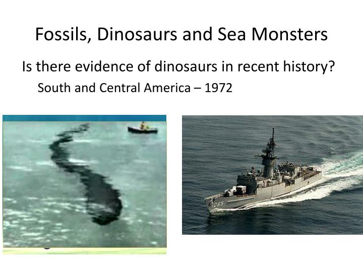 Fossils, Dinosaurs and Sea Monsters