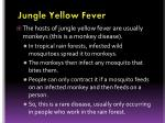 jungle yellow fever