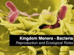 kingdom monera bacteria reproduction and ecological roles