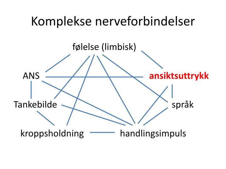 Komplekse nerveforbindelser
