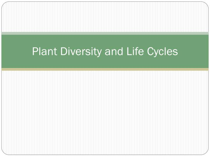 plant diversity and life cycles n.