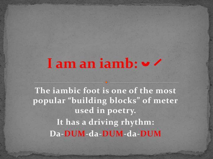 I am an iamb:
