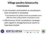 village poultry biosecurity conclusions