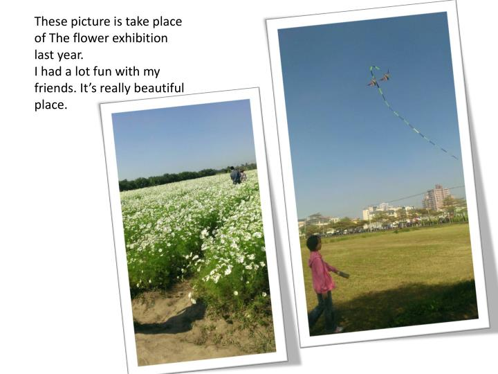 These picture is take place of The flower exhibition last year.