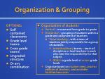 organization grouping