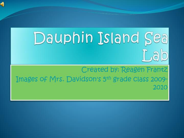 dauphin island sea lab n.