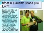 what is dauphin island sea lab