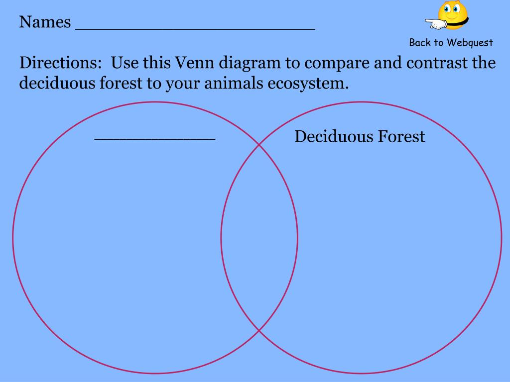 directions: use this venn diagram to compare and contrast the deciduous  forest to your animals ecosystem  back to webquest