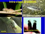 intra clade predation