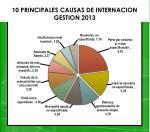 10 principales causas de internacion gestion 2013