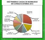 diez primeras causas de morbilidad en consulta externa 2013
