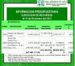 informacion presupuestaria ejecucion de recursos al 31 de diciembre del 2013