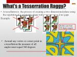 what s a tesserration raggy
