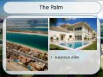 the palm1
